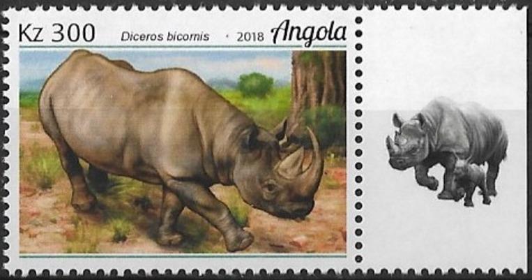Angola 2018 Wildlife of Angola - Rhinos c.jpg