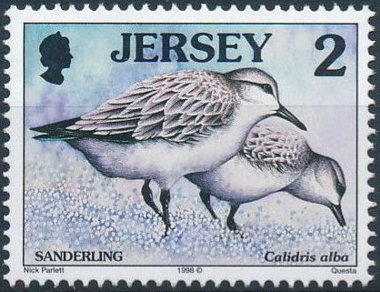 Jersey 1998 Seabirds and waders (2nd Issue)
