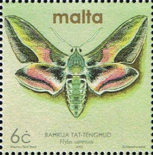 Malta 2002 Butterflies and Moths