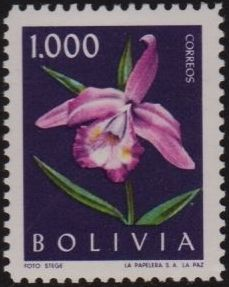Bolivia 1962 Flowers d.jpg