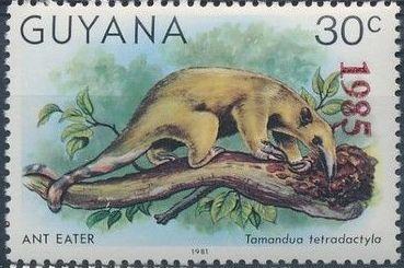 Guyana 1985 Wildlife (Overprinted 1985) h.jpg