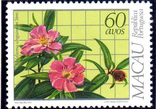 Macao 1983 Local Medicinal Plants c.jpg
