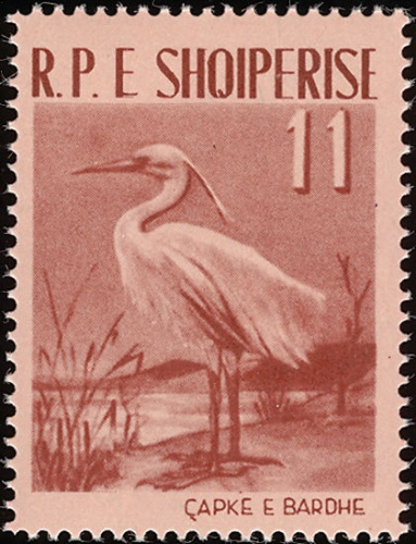 Albania 1961 Albanian Birds c.jpg