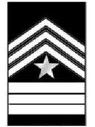 Cadet Sergeant Major-1