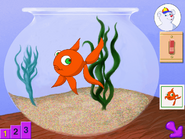 Pre95 fish bowl
