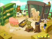 K-new petting zoo