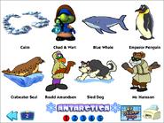 Ex antarctica stickers