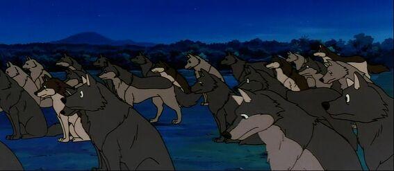 Wolf Pack (Jungle Book Shōnen Mowgli)