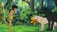 Mowgli, Luri and Bagheera