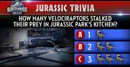 Velociraptor Trivia
