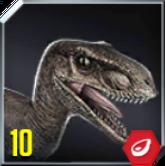 Velociraptor Icon 10