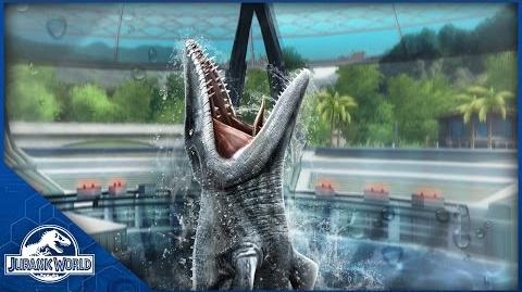 The Mosasaurus Our Next BIG Attraction!