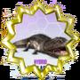 Koolasaurus Connector