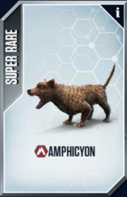Amphicyon Card.png