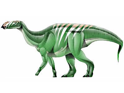 Muttaburrasaurus-JPI.jpg