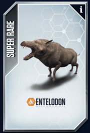 Entelodon New Card.png
