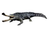 Gryposuchus