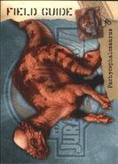 2001 Jurassic Park III 3-D 69 Pachycephalosaurus front