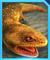 Gen 2 Koolasuchus Icon JWA.png
