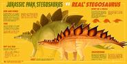 Jurassic Park Stegosaurus vs Real Stegosaurus