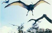 Pteranodon flying