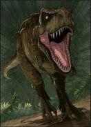 Rex CC