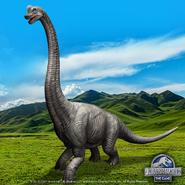 Brachiosaurus dfdf