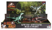 Raptor Squad release