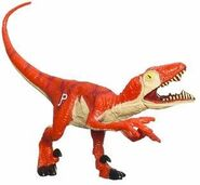 Raptor2pack22009