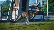 JWEParasaur