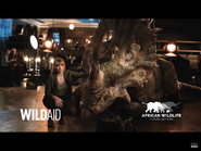 Claire and Perry the Sinoceratops in AWF ad