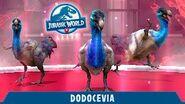 Dodoinostren