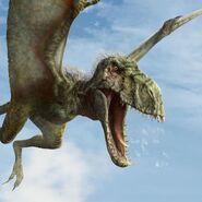 Dimorphodon3
