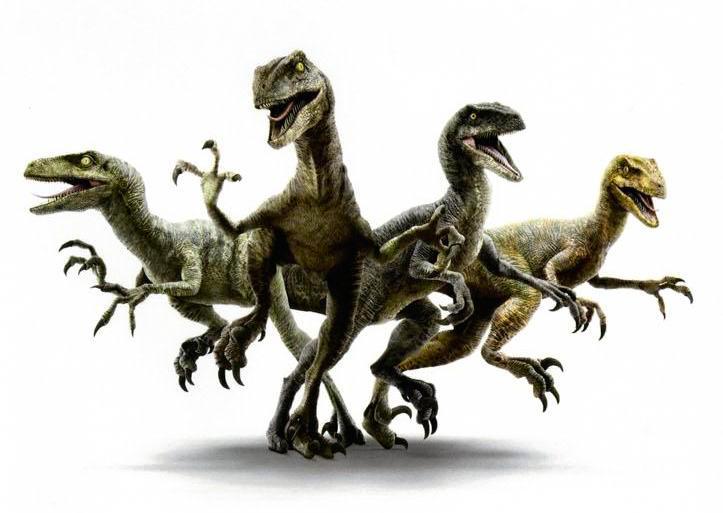Jurassic World Velociraptor Pack Jurassic Park Wiki Fandom Eso es en gran parte. jurassic world velociraptor pack