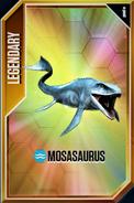 New Mosasaurus Card