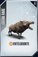 Entelodon (The Game)