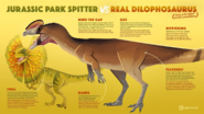 Jurassic Park Spitter vs Real Dilophosaurus