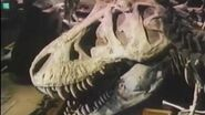 The Real Jurassic Park - Documentary - 1993