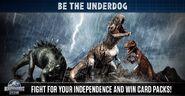 Underdogs Battle