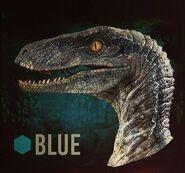16-best-jurassic-dinos-images-on-pinterest-jurassic-park-world-jurassic-worlds-raptor-squad