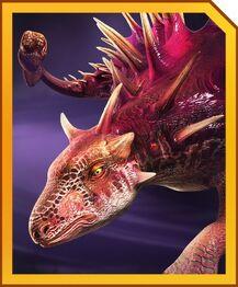 Amargocephalus card