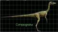 Compsognathus jp3