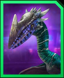 Stygidarix profile