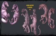 JP3 fetuses