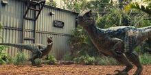 Jurassic world bluedelta by jd1680a-d9c81k9 (1).jpg