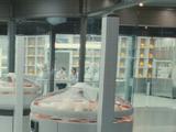 Лаборатория создания Хаммонда