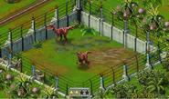 Velociraptor2ndstage
