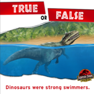True or False Dinosaurs were strong swimmers