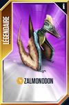 Zalmonodon