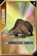 Rhinocéros laineux (The Game)